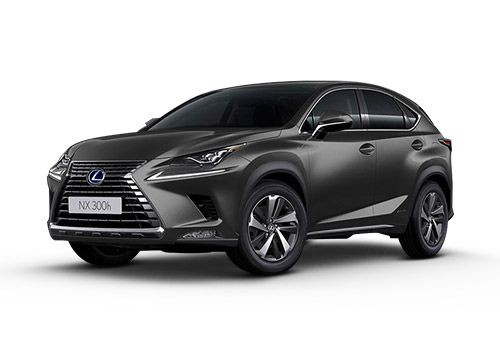 Lexus NX Graphite Grey Color